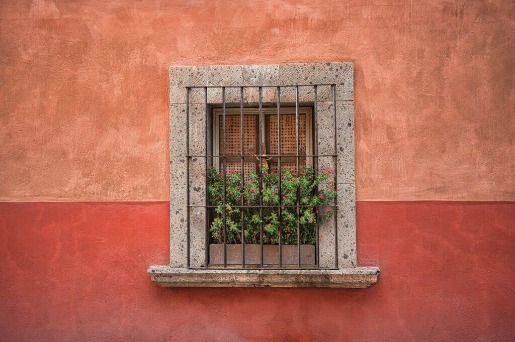 san miguel de allende window with two toned wall and red flowers